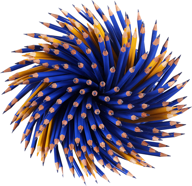 Le matite di Paola Pezzi